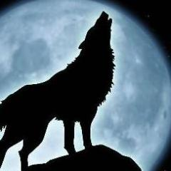 lonewolf842