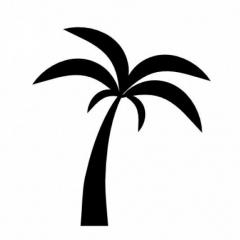 BeachTimeTraveler